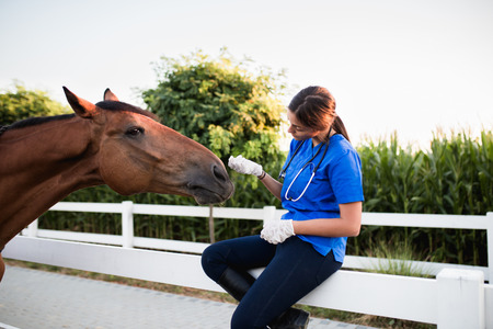 Veterinarian enjoying with a horse outdoors at ranch.