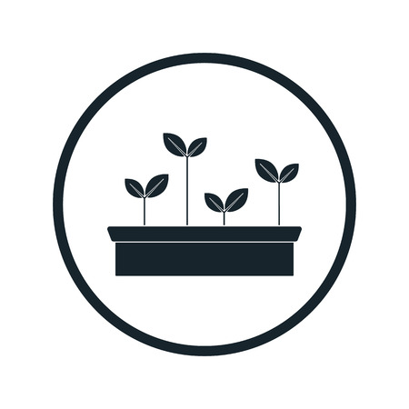 seedlings: seedling icon