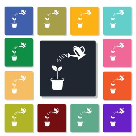 houseplants: houseplants icon
