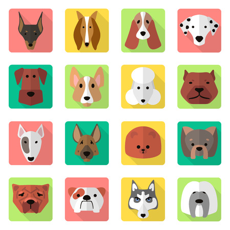 collies: dogs icons set