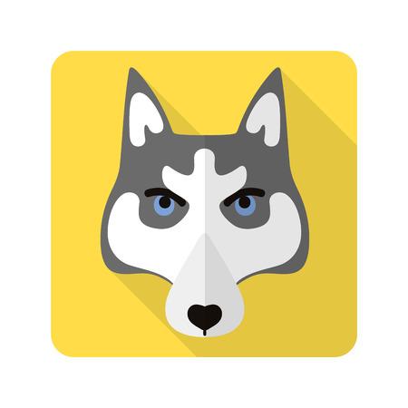 huskies: dog flat icon