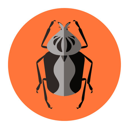 beneficial insect: insects flat icon