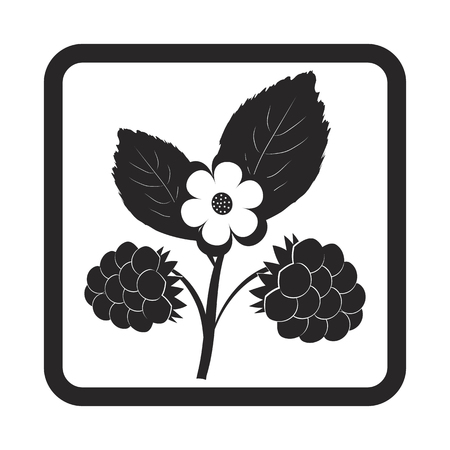 fruit and vegetable: berry icon