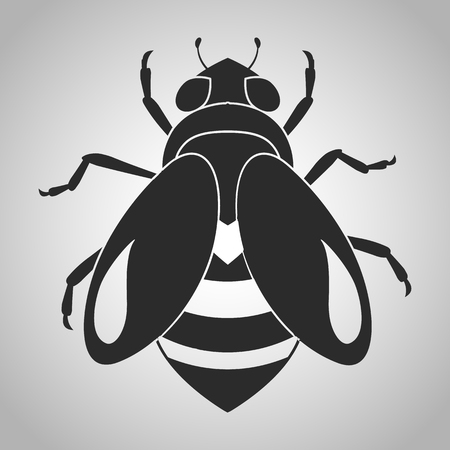 etymology: insect icon