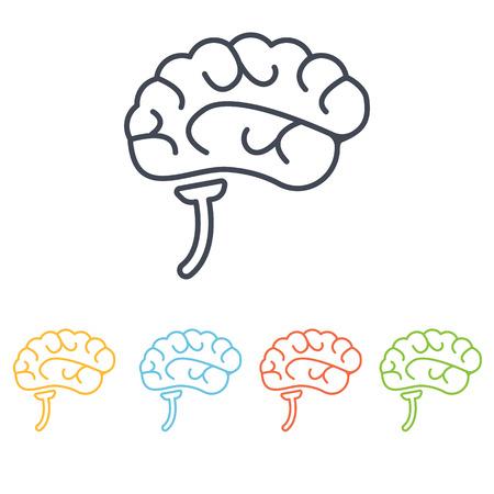 gray matter: human organs icon Illustration