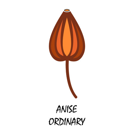anise ordinary flat icon