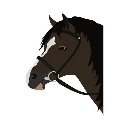horse flat icon