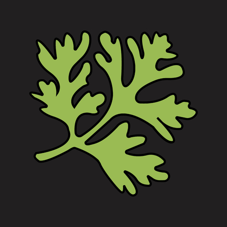 parsley flat icon