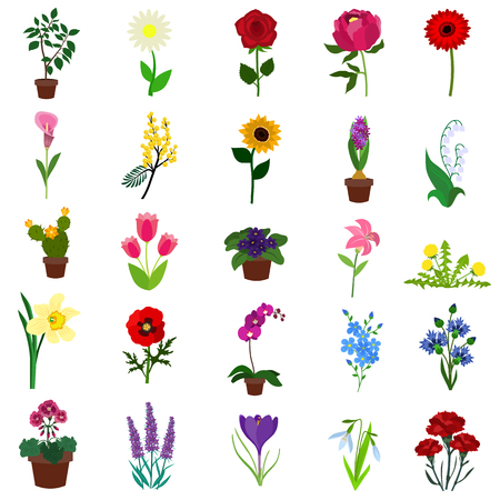 Bloemen plat pictogram set