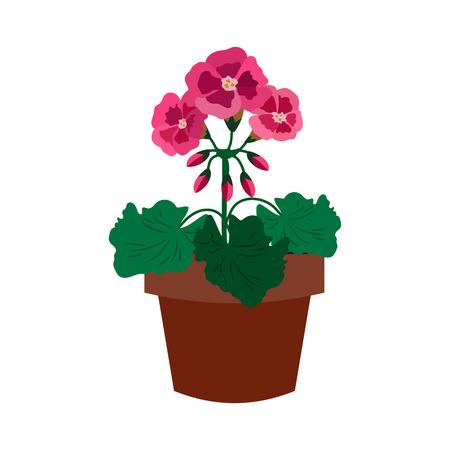 primula: Flower flat icon.