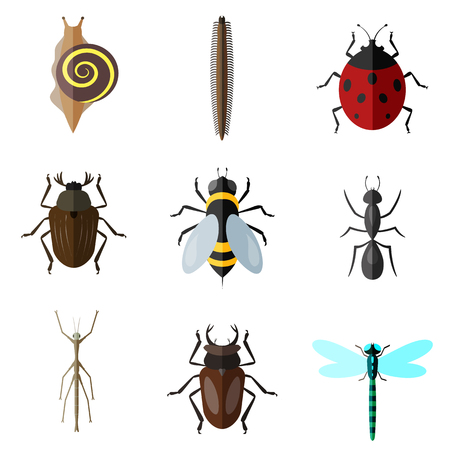 insects flat icon set Illustration