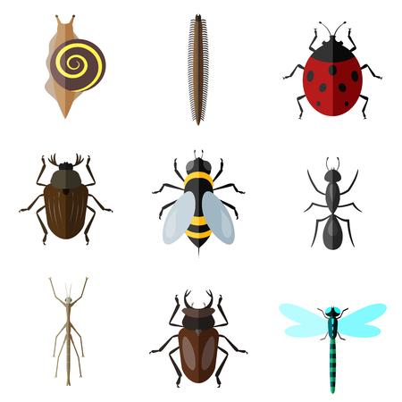 Les insectes plat, icône, ensemble Banque d'images - 79429598