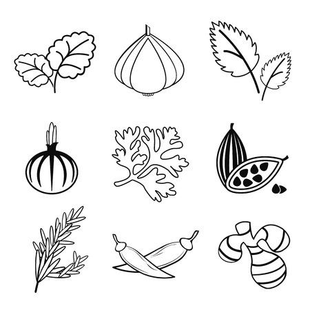 Spice icon set vector illustration.