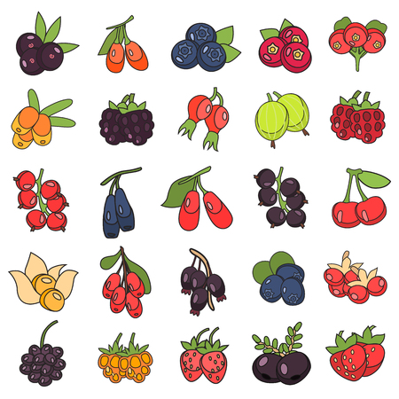 Set of Berries in colored flat icon, cartoon illustration.