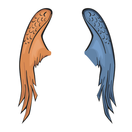 Wing color flat on plain background.