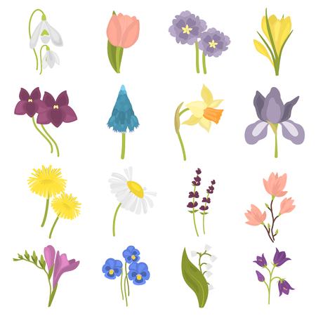 Spring flower flat icon set.