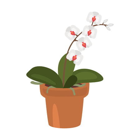 Home flower flat icon Illustration