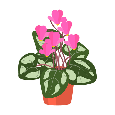 Home flower pink flat icon