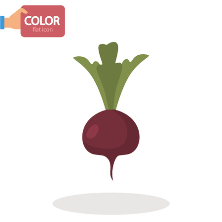 Beet vegetable flat color icon