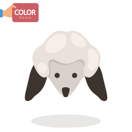 Lambs head flat color icon