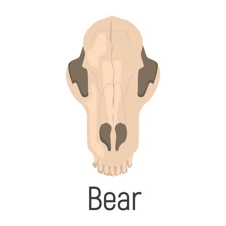 Bear skull color vector icon. Flat design