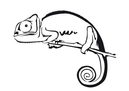 Chameleon Stock Illustratie