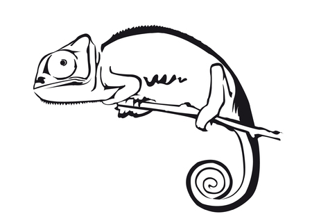 Chameleon 矢量图像