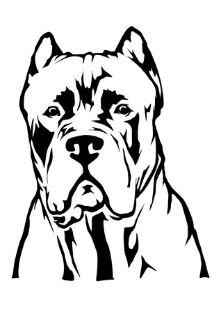 Cane carso Illustration