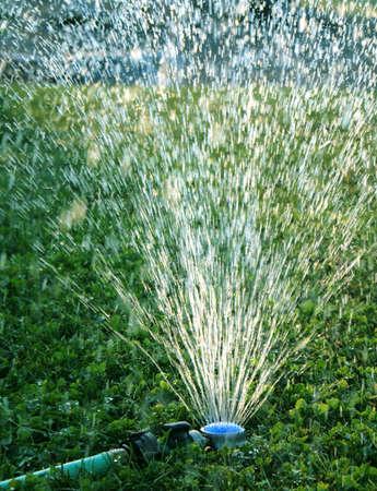 sprinker Stock Photo
