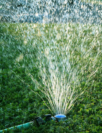 irrigate: sprinker Stock Photo