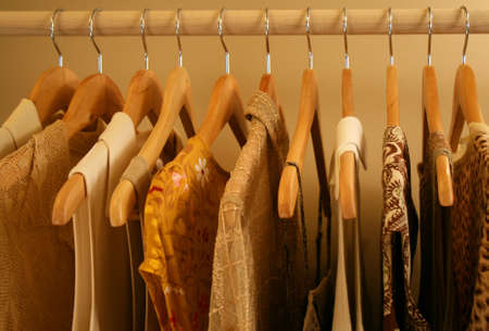 closet: beige, gold and brown sleeveless blouses
