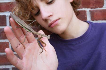 boy examining large insect