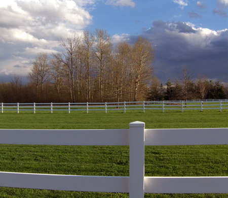 fenced pasture land on equestrian farm