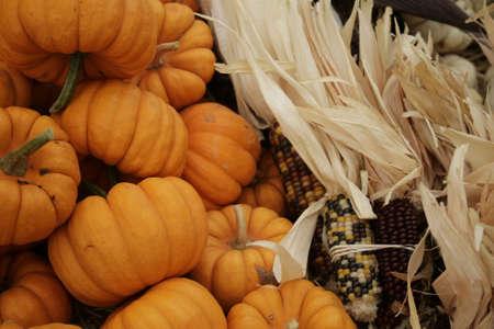 harvest festival display Stock Photo - 5710461