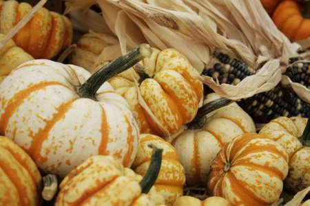 herfst oogst display