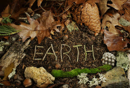 the word earth written in twigs upon the forest floor Stock Photo