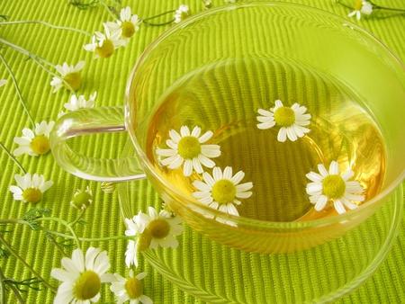 Chamomile tea photo