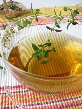 catarrh: Herbal tea with Thyme Stock Photo