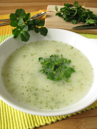 berros: Cream soup with watercress