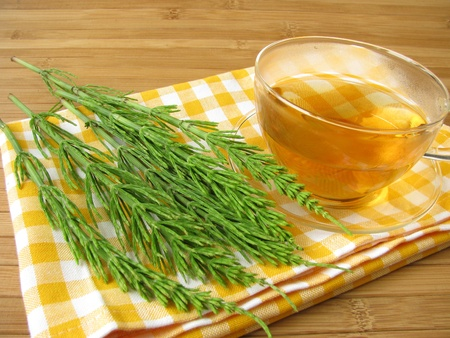 Tea with field horsetail photo