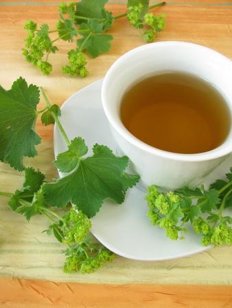 ladys mantle: Ladys mantle tea