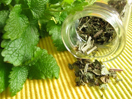 balm: Tea herbs with balm Stock Photo