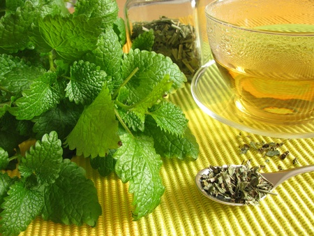 lemon balm: Tea with balm