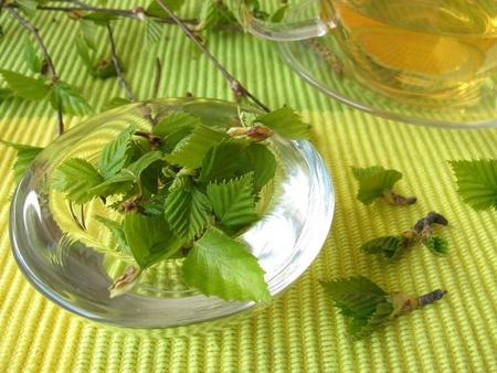 Birch leaves tea