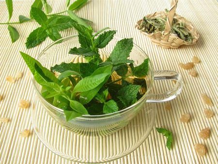 Herbal tea with lemon verbena and moroccan mint
