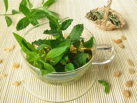 Herbal Tee mit Zitrone-Verbene und marokkanischen Minze Standard-Bild - 9978264