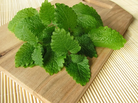 lemon balm: Bunch of lemon balm  Stock Photo