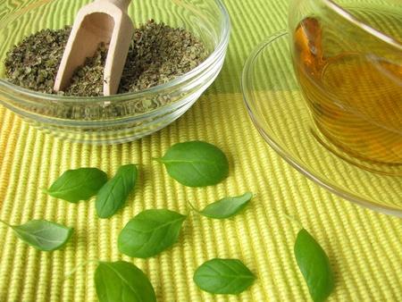 Tea with marjoram photo