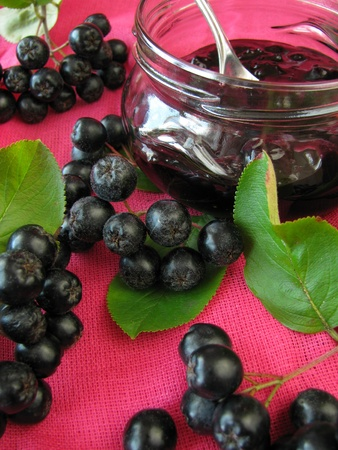 Zwarte appelbes jam Stockfoto - 10262759