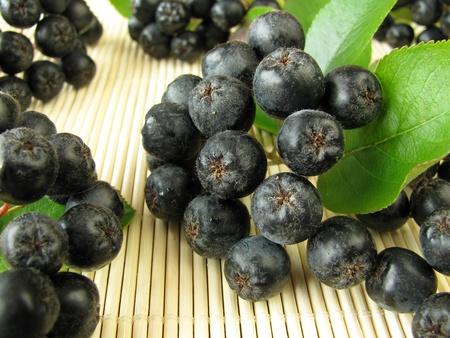 Black Zwarte appelbessen Stockfoto
